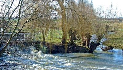 The weir at Wye